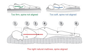 side sleepers spinal-alignment